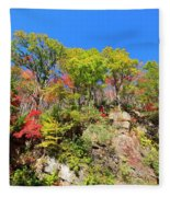Autumn Color On Newfound Gap Road In Smoky Mountains National Park Fleece Blanket