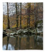 Autumn On The Kings River Fleece Blanket