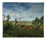 Autumnal Altamaha Fleece Blanket