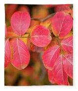 Autumnal Hues Fleece Blanket