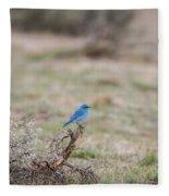 B10 Fleece Blanket