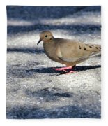 Baby Mourning Dove Fleece Blanket