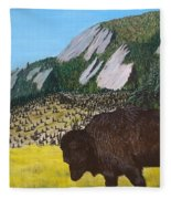 Back From The Brink Fleece Blanket by Kevin Daly