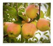 Backyard Garden Series - Apples In Apple Tree Fleece Blanket