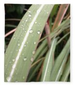 Bamboo And Water Fleece Blanket