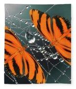 Banded Orange Butterfly. Fleece Blanket
