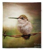 Barbed Wire Hummingbird Perch Fleece Blanket