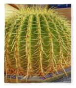 Barrel Cactus Royal Palms Phoenix Fleece Blanket