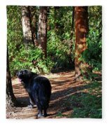 Bear In The Woods Fleece Blanket
