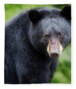Bear Stare Fleece Blanket