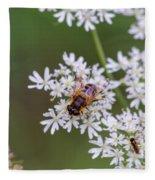 Bee Relaxing On A Flower. Fleece Blanket