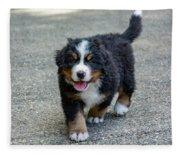 Bernese Mountain Dog Puppy 2 Fleece Blanket
