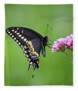 Black Swallowtail Balance Fleece Blanket
