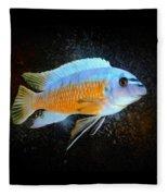 Blue Mbuna Cichlid Fleece Blanket