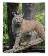 Bobcat Fleece Blanket