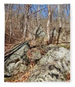 Boulders Along The Trail Fleece Blanket
