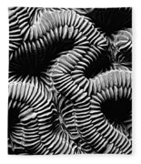 Brain Coral In Macro Bw Fleece Blanket
