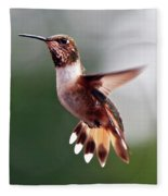 Broad Tailed Hummingbird Fleece Blanket