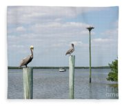 Brown Pelicans On Pilings And An Osprey Nest In The Tarpon Bay A Fleece Blanket