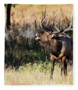 Bull Elk 3068 Fleece Blanket
