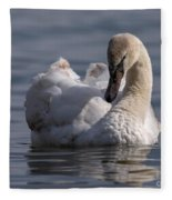 Busking Cygnet Fleece Blanket