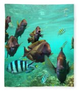 Butterflyfish And Sergeant Major Fleece Blanket