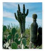 Cactus Twins Have Company Fleece Blanket