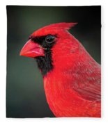 Cardinal Fleece Blanket by Allin Sorenson