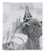Catnip Fleece Blanket