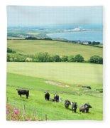 cattle in field and east coast Berwickshire Fleece Blanket