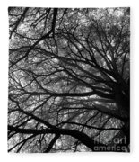 Cedars In The Mist Fleece Blanket