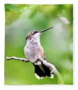 Charming Hummingbird Square Fleece Blanket