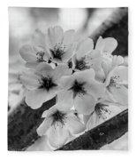 Cherry Blossoms 2019 E Fleece Blanket