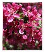 Cherry Blossoms 2019 IIi Fleece Blanket