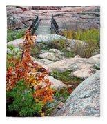 Chikanishing Trail Boardwalk Fleece Blanket