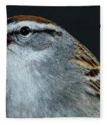 Chipping Sparrow 2 Fleece Blanket by Allin Sorenson
