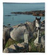 Cleggan Connemara Fleece Blanket