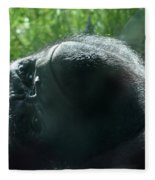 Close-up Of Frowning Adult Mountain Gorilla Fleece Blanket