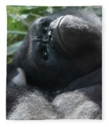 Close-up Shot Of Silverback Gorilla Making An Angry Face Fleece Blanket