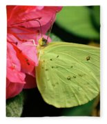 Cloudless Sulphur Fleece Blanket