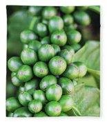 Coffee Berries Fleece Blanket