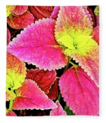 Coleus Colorfulius Fleece Blanket