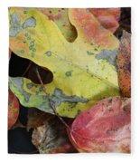 Collective Autumn Color Fleece Blanket
