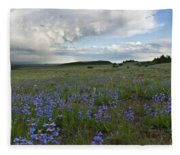 Colorado Evening Wildflower And Cloud Landscape Fleece Blanket