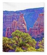 Colorado National Monument Colorado Blue Sky Red Rocks Clouds Trees 2 10212018 2871.jpg Fleece Blanket
