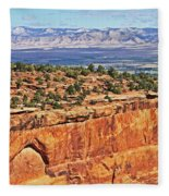 Colorado National Monument Trees Rock Formations 3087 Fleece Blanket
