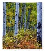 Colors Of October Fleece Blanket by John De Bord