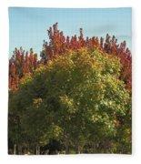 Colors Of The Neighborhood 25 Fleece Blanket