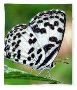 Common Pierrot Butterfly Fleece Blanket