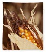 Corn In Dry Husk Fleece Blanket
